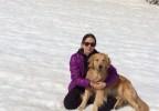 Vivere con un cane o vivere il cane